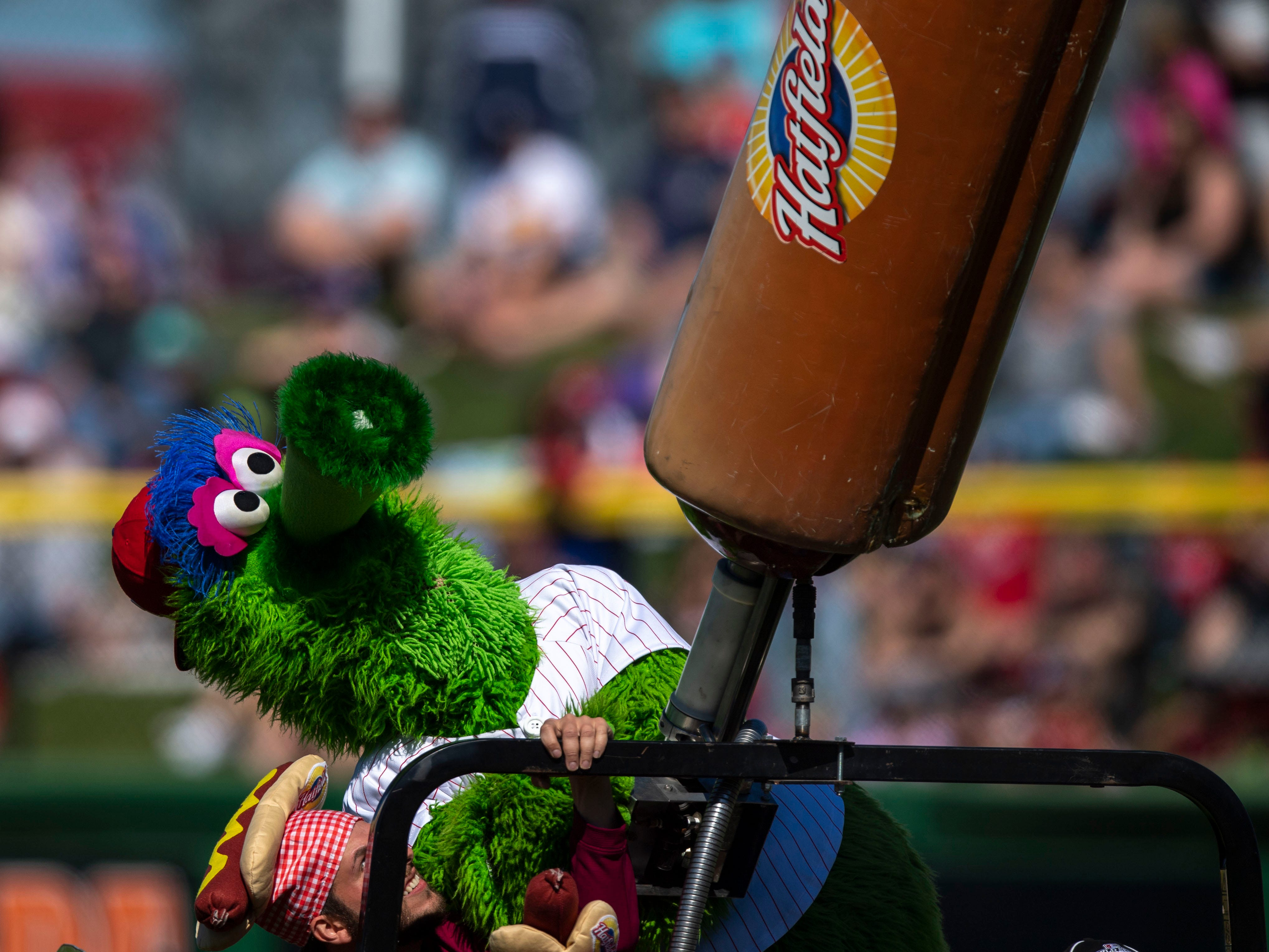 March 7: Phillies mascot shoots hot dogs into the stands.