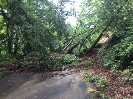 Storms in May 2018 caused heavy damage to the Point Lookout Trail in the McDowell County area of Pisgah National Forest.