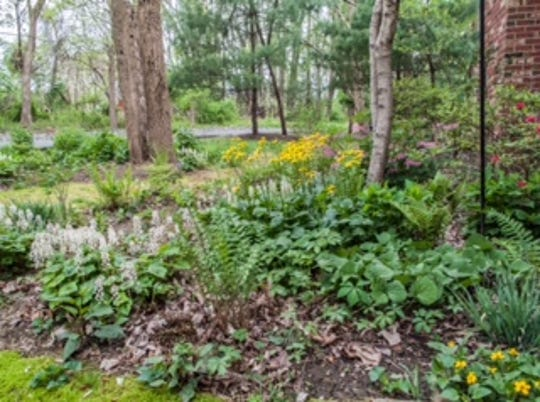 """Lambertville Goes Wild (LGW) will sponsor a two-part learning series """"Learn to Landscape: Dream, Design, and Detail"""" at the Lambertville Public Library, 6 Lilly St., Lambertville."""