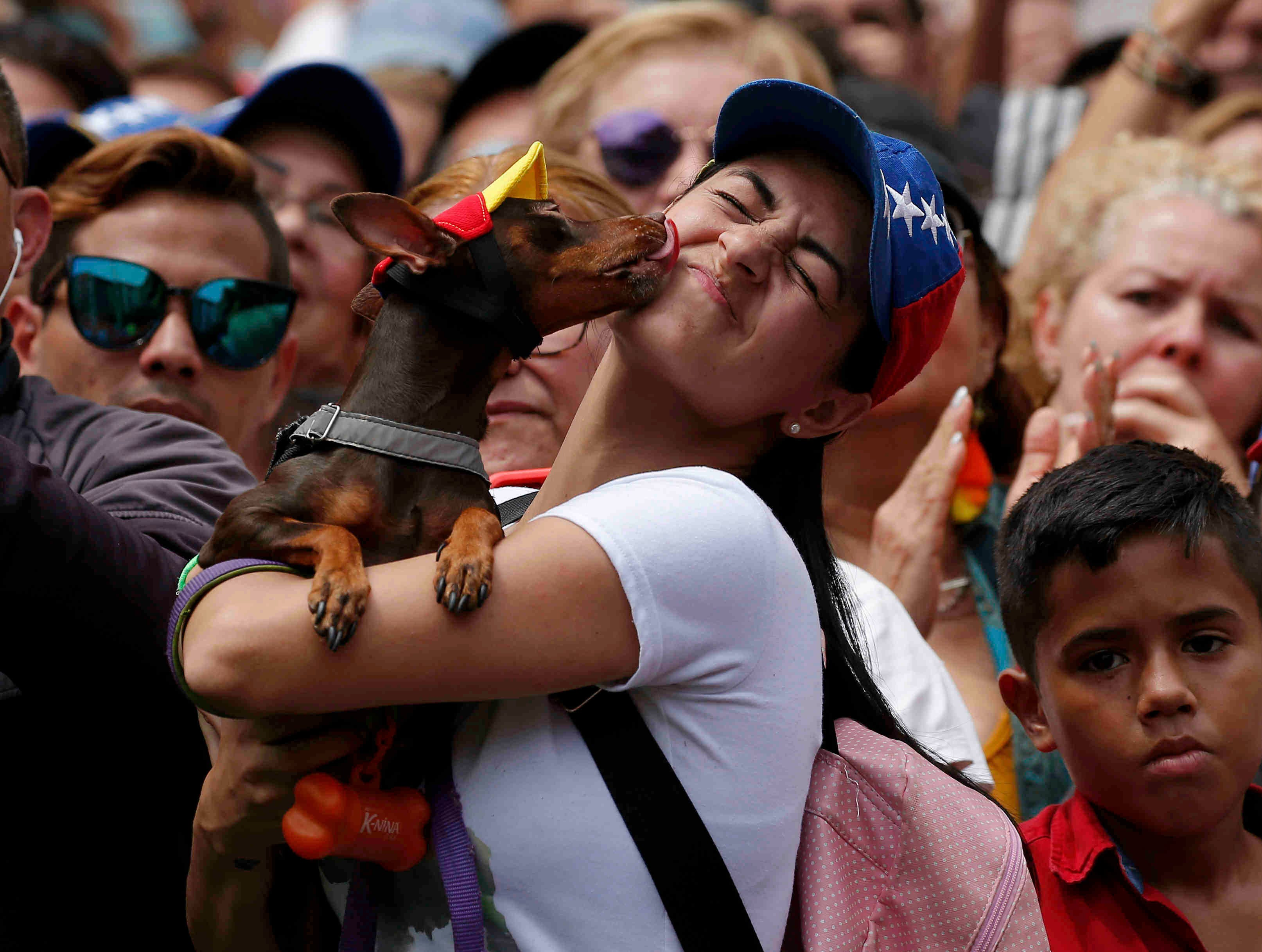 A dog licks his owner during a rally in commemoration of International Women's Day, in Caracas, Venezuela, Friday, March 8, 2019. Marches and protests are held Friday across the globe under the slogan #BalanceforBetter, with calls for a more gender-balanced world.