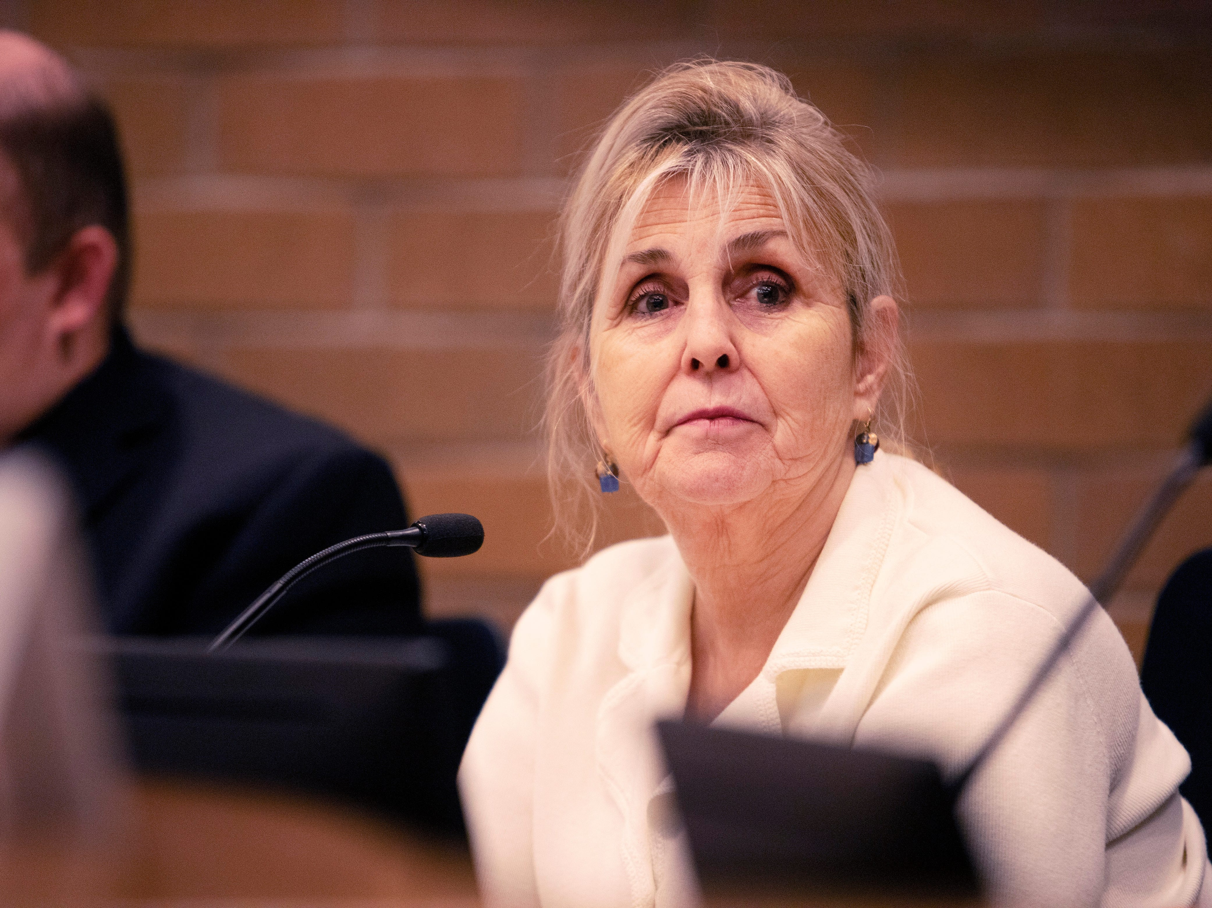 City Council candidate Susan Holmes participates in the candidate forum hosted by The League of  Women Voters of Larimer County at City Hall on March 6.