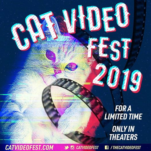 The IMAX Theater in the Indiana State Museum is hosting a CatVideo Fest at 8:30 p.m. on March 11.