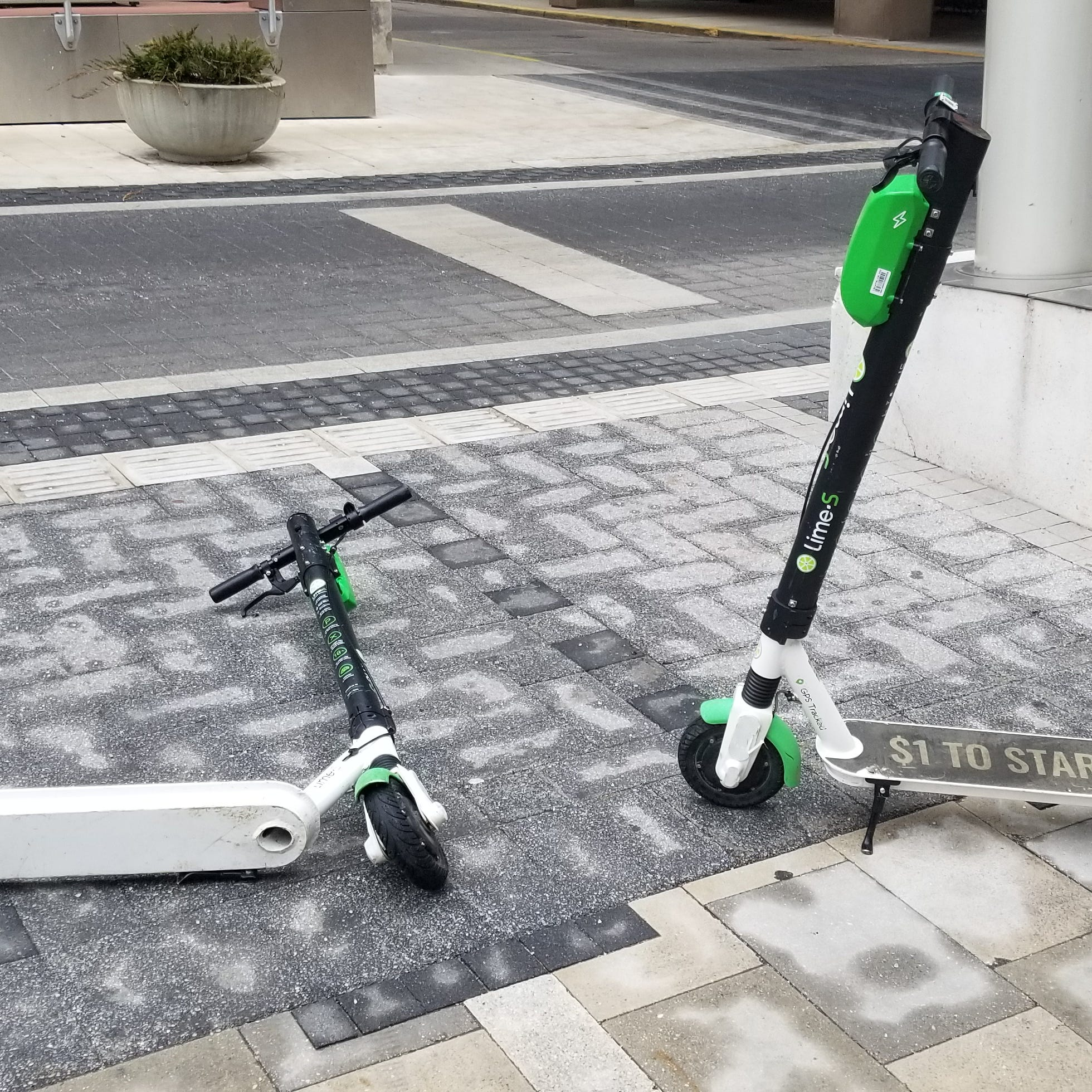 More than 60 percent of survey respondents had been involved in a crash or near miss with an electric scooter