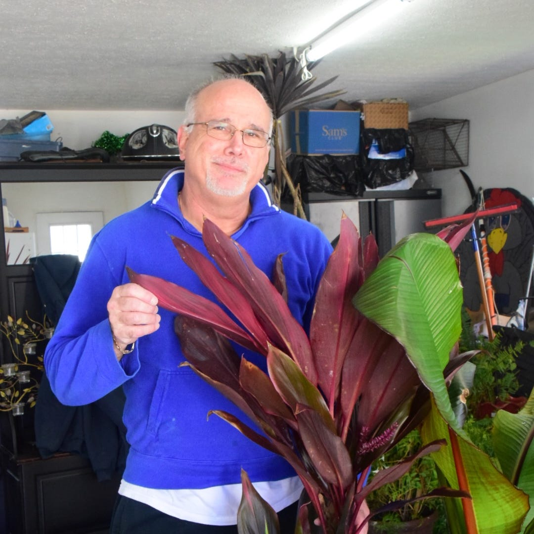 Palm trees in Knoxville? Ex-lawmaker has a green thumb for tropical plants