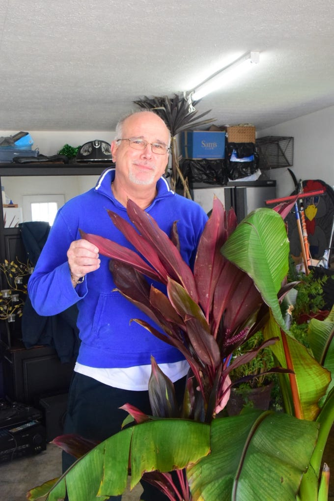 """""""What I love most about tropicals is the foliage,"""" said Roger Kane at his garage greenhouse."""