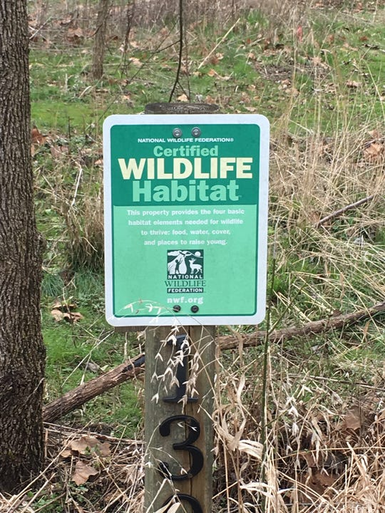 Mark Campen urges Knoxvillians to consider turning their yards into wildlife habitats.