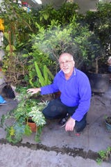 Avid gardener Roger Kane is passionate about growing his nearly 150 tropical plants at his garage greenhouse.