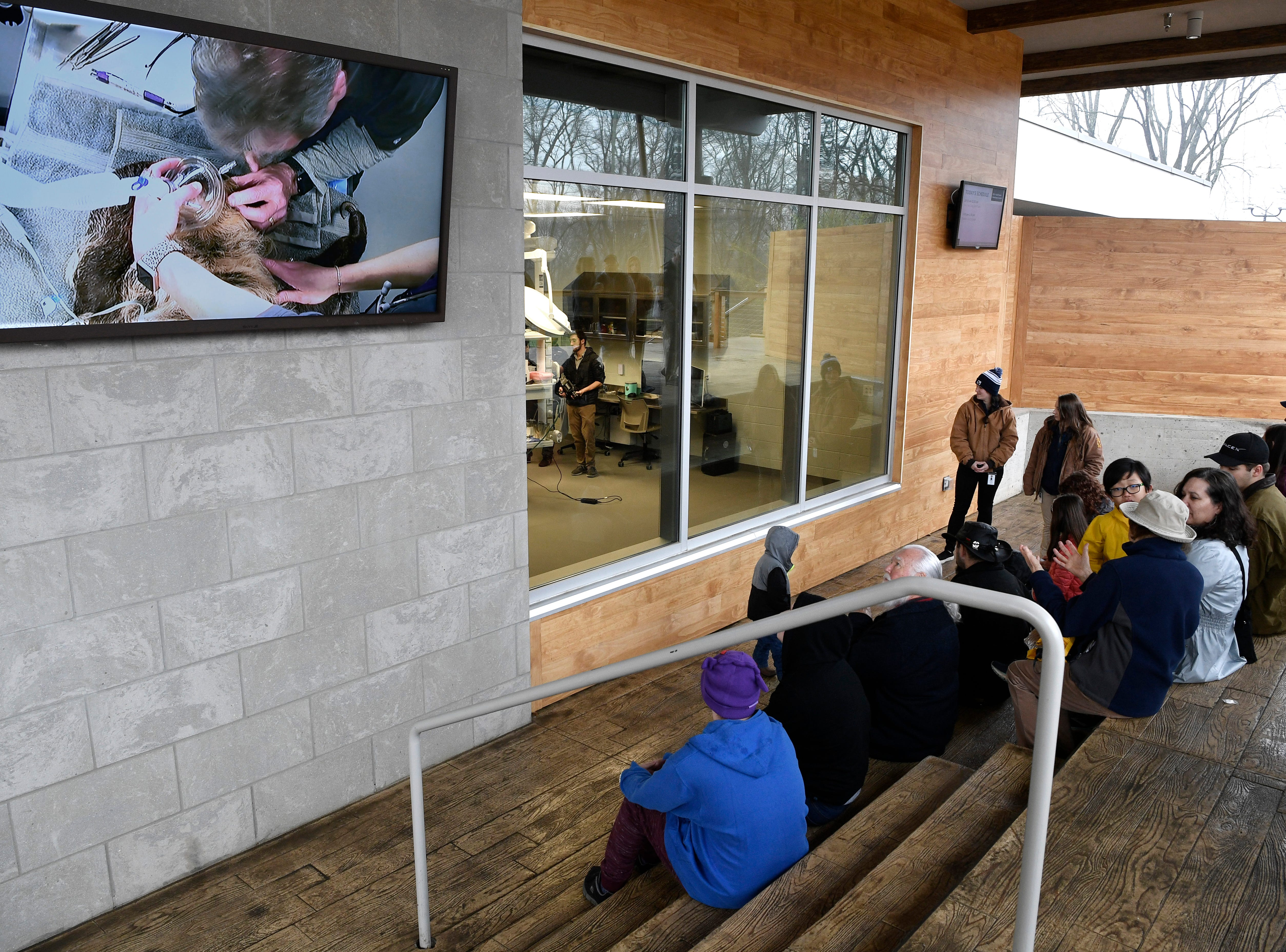 The public is able to view procedures through a window and also on a large screen outside the operating room at the new 23,000 square-foot HCA Healthcare Veterinary Center at the Nashville Zoo Friday, March 8, 2019, in Nashville, Tenn.