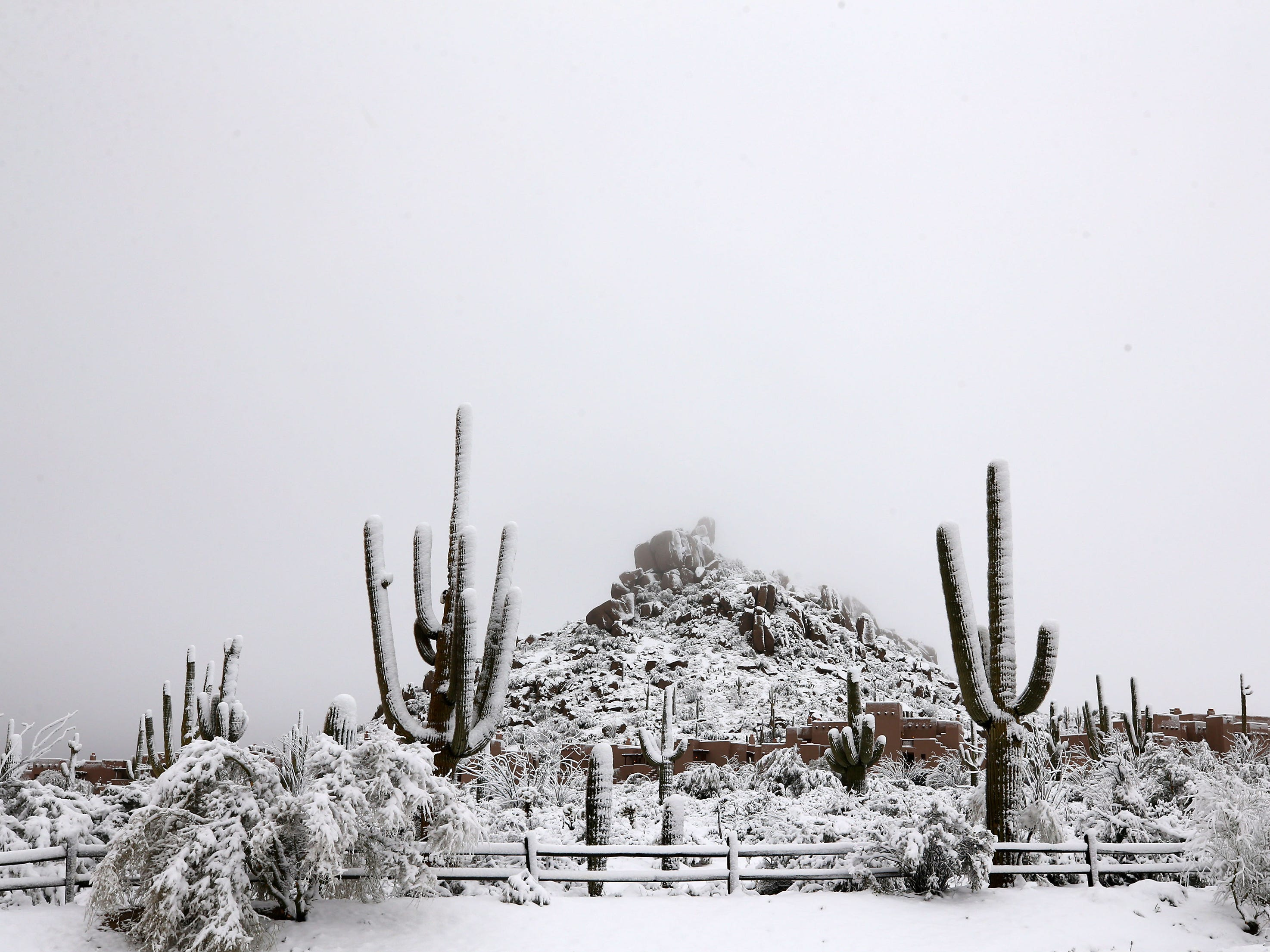 A winter storm brought 6 inches of snow to this high desert area on Feb. 22, 2019 in Scottsdale, Ariz.