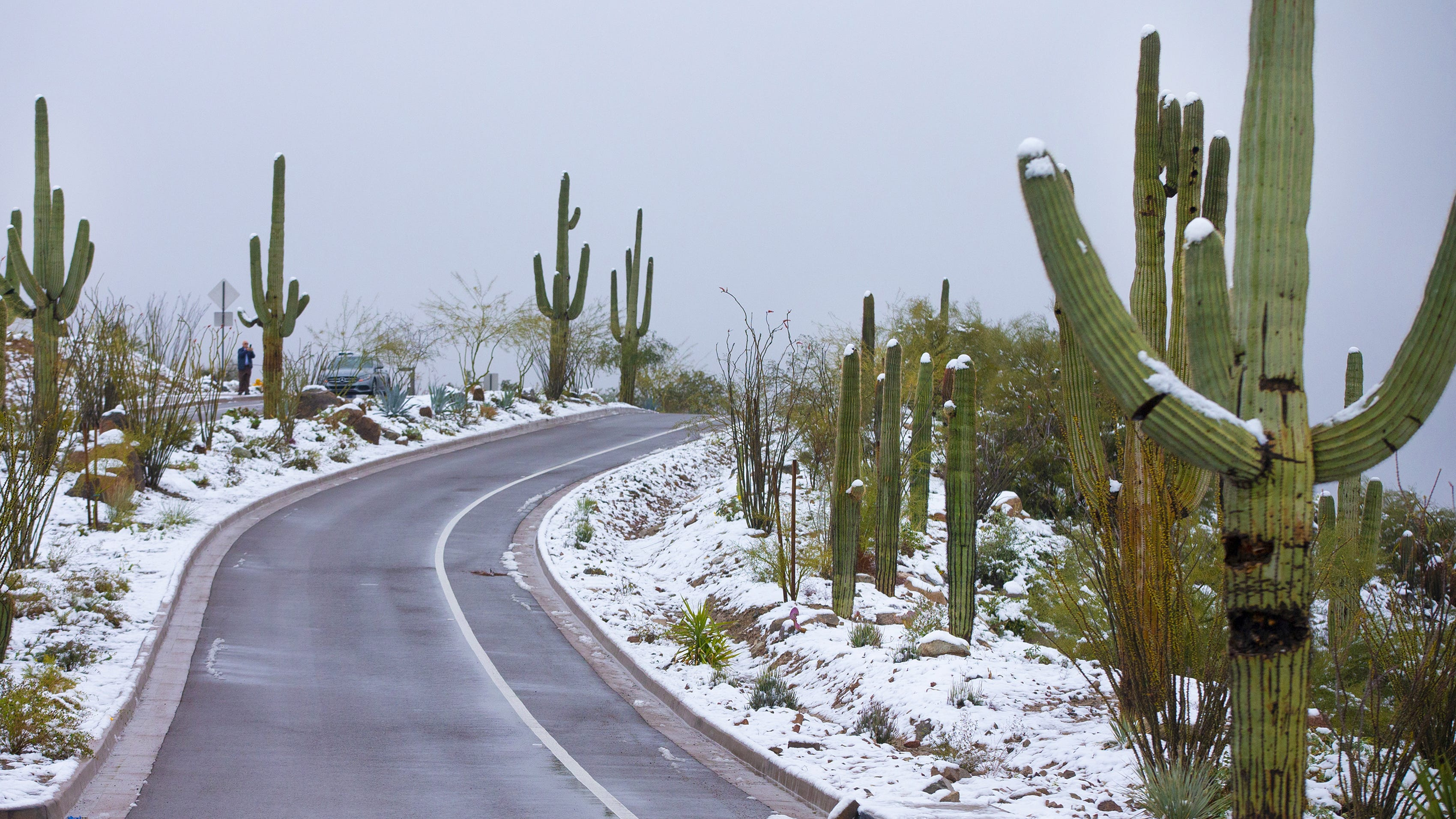 Spring's arrival ushers out 2nd coldest Phoenix winter since 1981