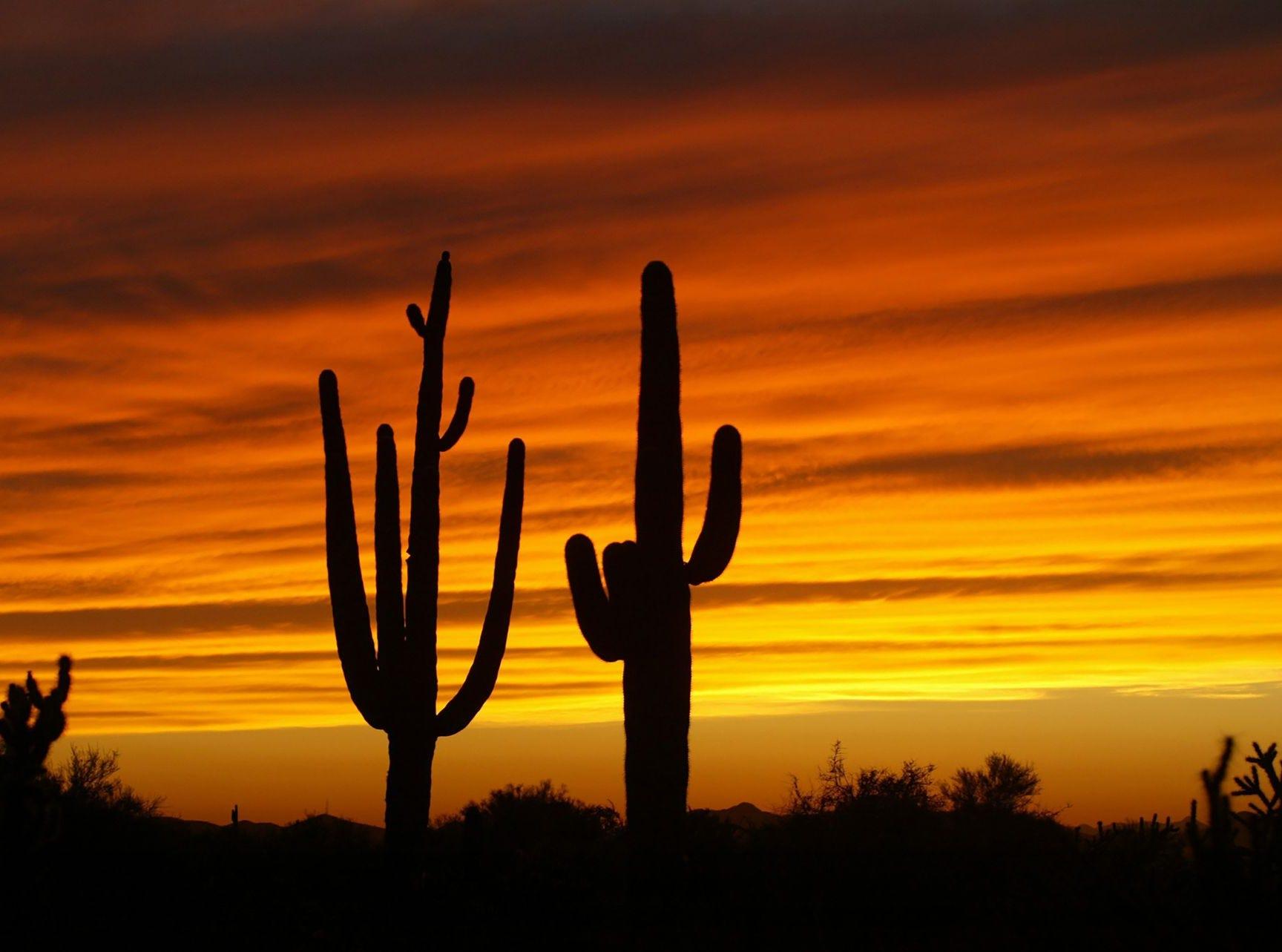 Un colorido atardecer adorna el cielo del desierto cerca de Cave Creek.