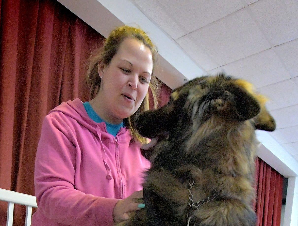 Nicole Bender, of Dover Township, works with her German shepherd Radar during a training session at Trinity Lutheran Church in East Berlin on Thursday, March 7, 2019. She was participating in a session offered by Cover Six Canines, a ministry of Freedom Biker Church York, which gives free service dog training to veterans. The family's dog was being trained to provide aid to her live-in mother-in-law. Bill Kalina photo