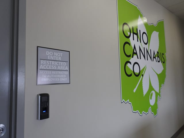 Why aren't Ohioans rushing to buy medical marijuana?