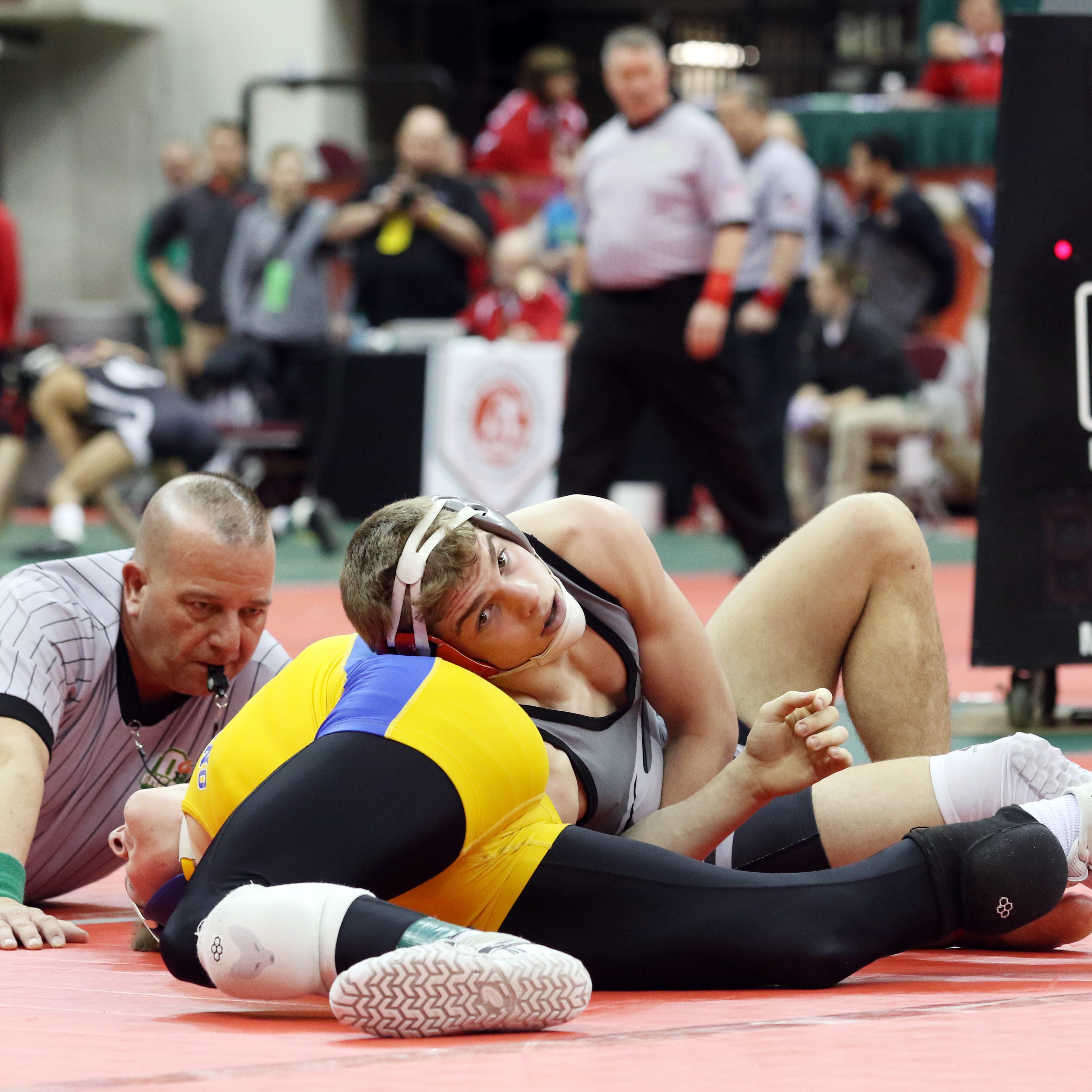 State Wrestling: Two area grapplers secure podium finish