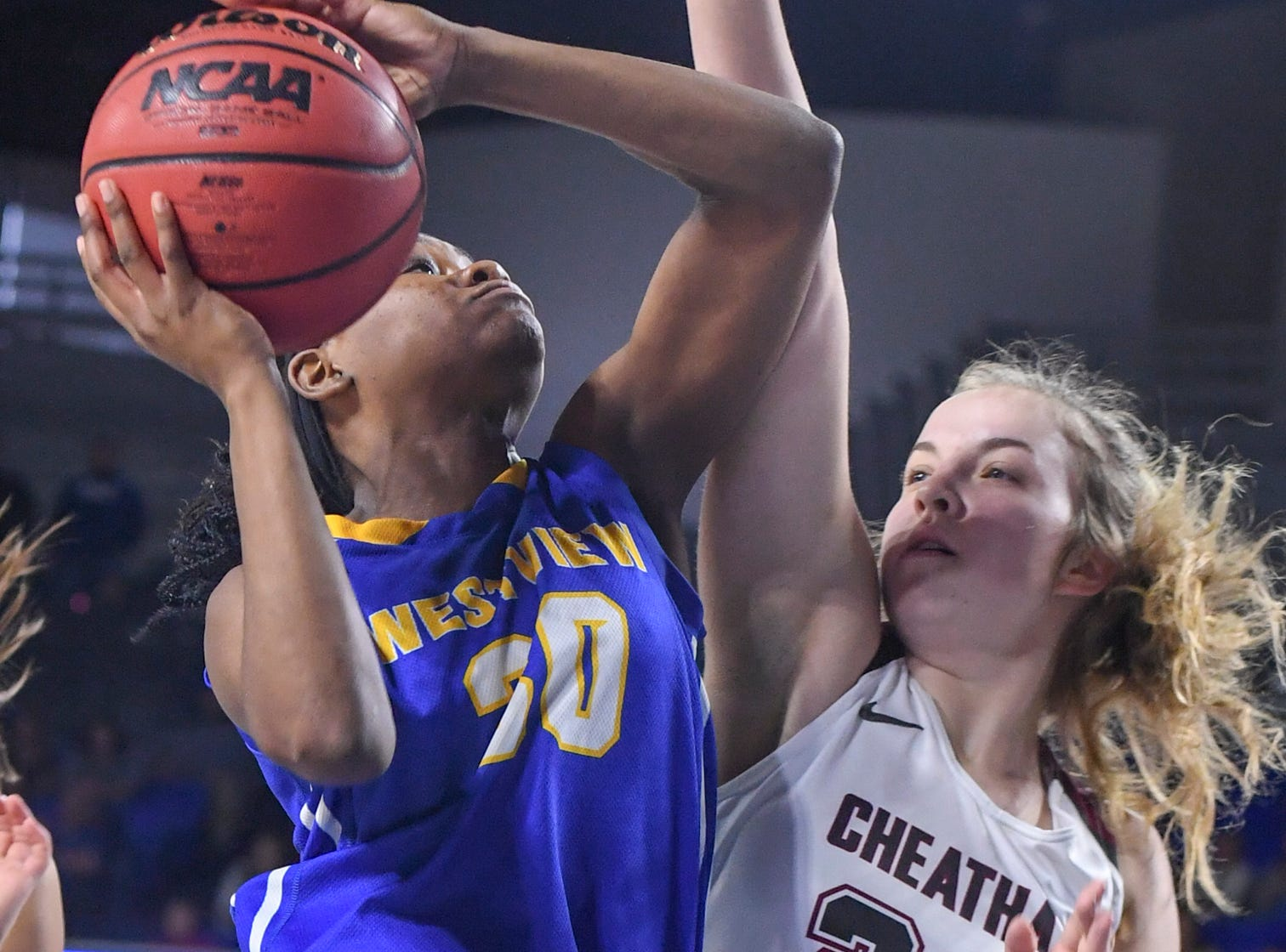 Westview's Tiara Yancey (30) draws a foul on Cheatham County's Alli Douglas (24) during their Class AA championship game, Saturday, March 9, 2019, in Murfreesboro.
