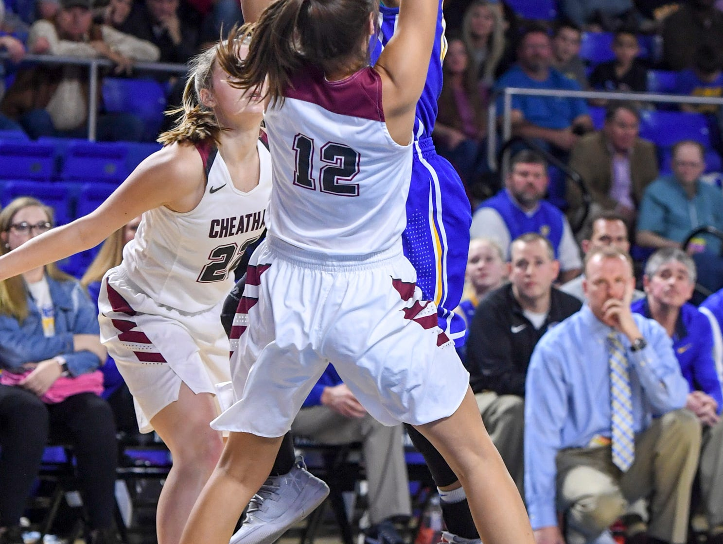 Westview's Zanasha Gadlen (10) draws a blocking foul on Cheatham County's Jorden Bumpus (12) during their Class AA championship game, Saturday, March 9, 2019, in Murfreesboro. Westview fell to Cheatham County, 43-40.