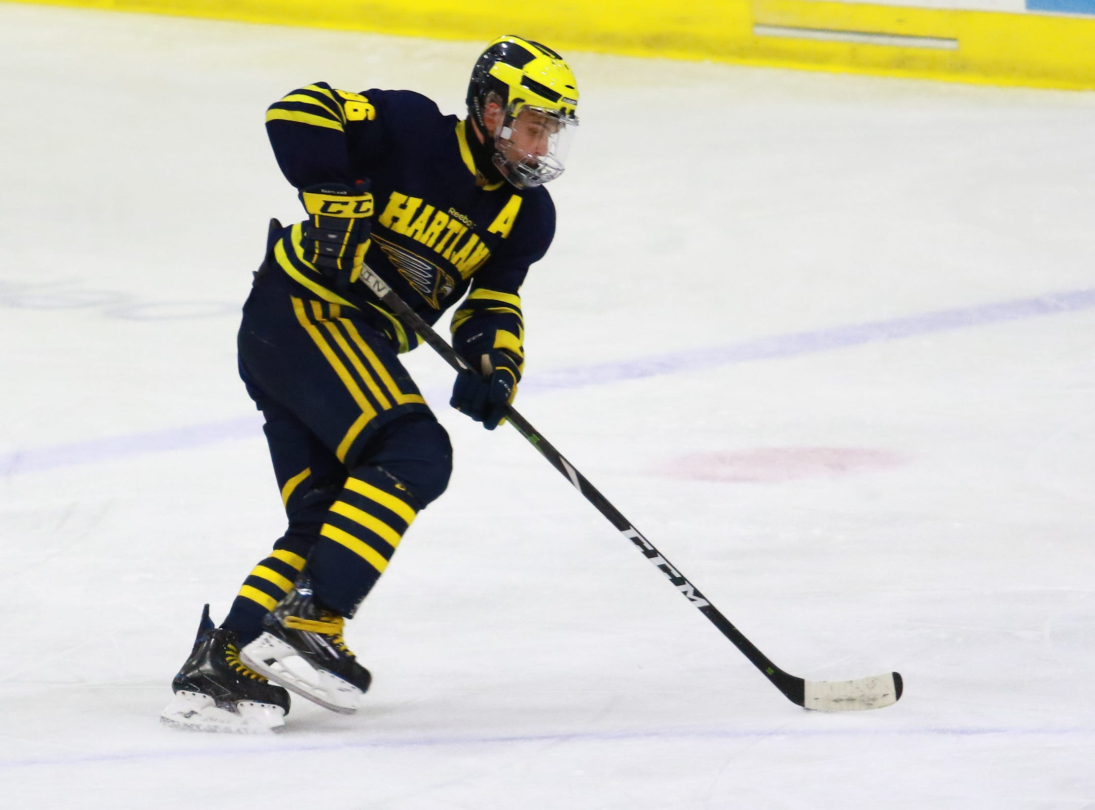 Hartland's Owen Pietila scored two goals eight seconds apart in a 4-0 victory over Trenton in the state Division 2 championship hockey game on Saturday, March 9, 2019 at USA Hockey Arena.