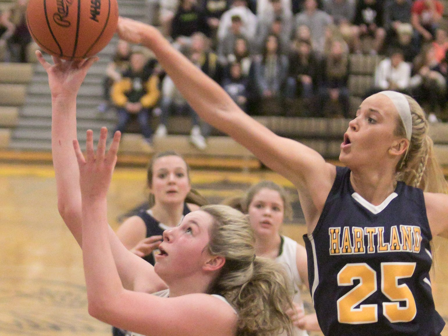 Howell's Meagan Tucker shoots in the district championship game at Hartland Friday, March 8, 2019.