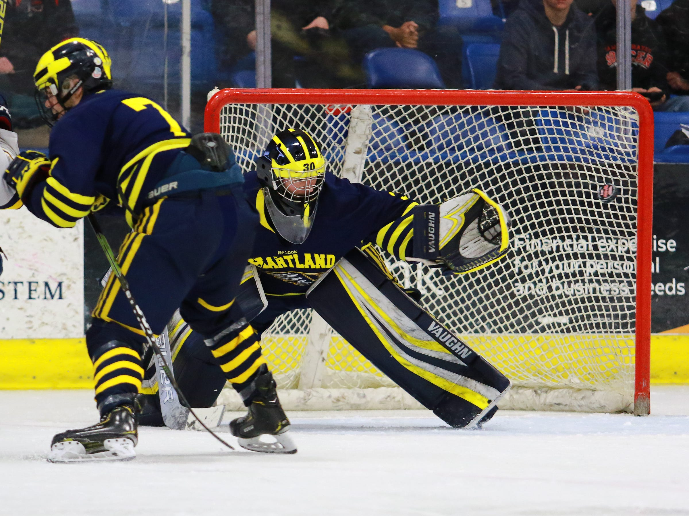 The puck flies wide of Hartland goalie Brett Tome in a 4-0 victory over Trenton in the state Division 2 championship hockey game on Saturday, March 9, 2019 at USA Hockey Arena.
