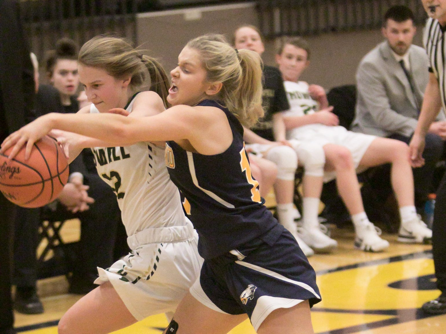 Amanda Roach of Hartland, right, and Howell's Allison Pennala struggle for control of the ball in the district championship game Friday, March 8, 2019.
