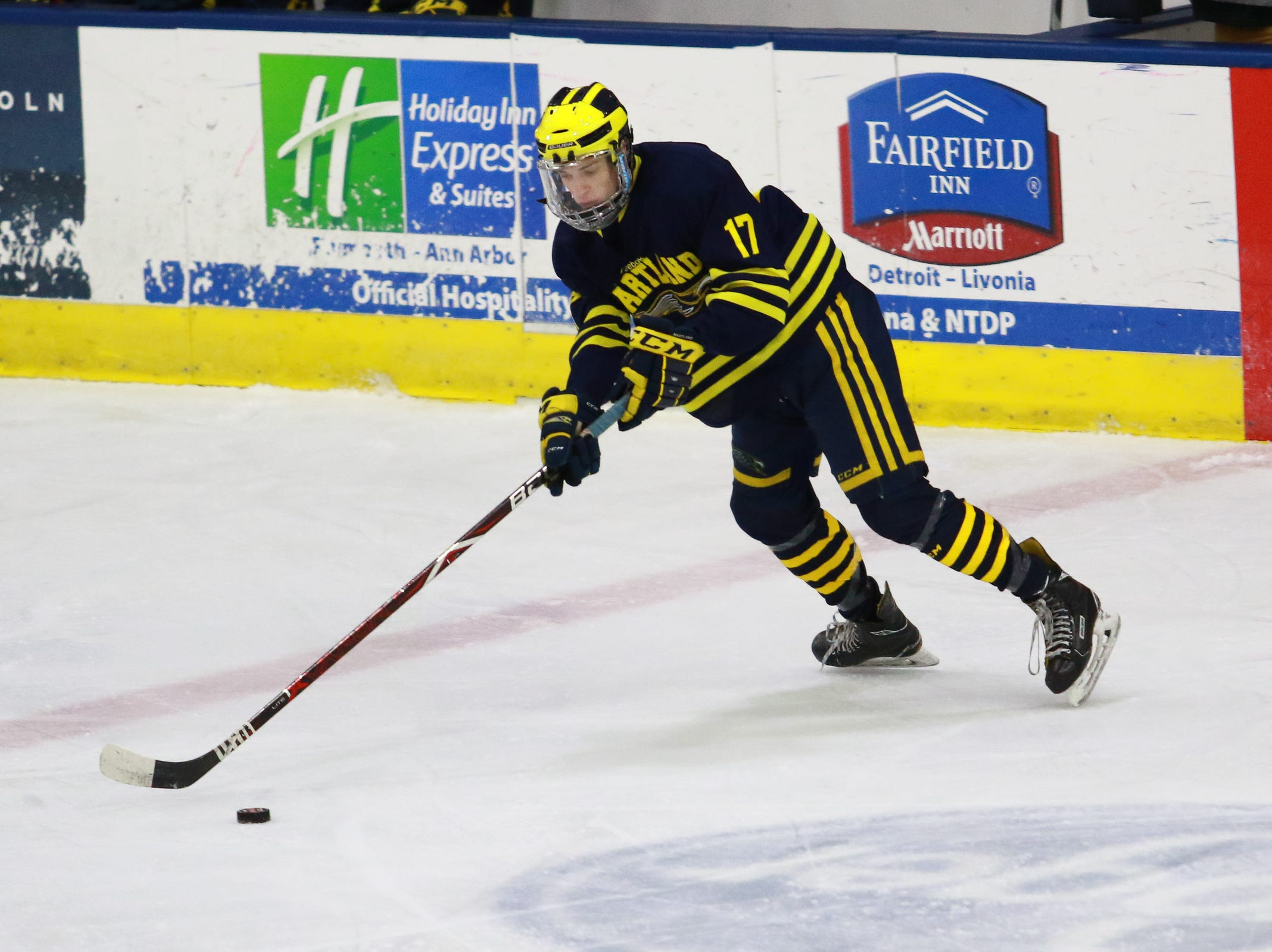 Hartland's Ryan Whitton skates with the puck in a 4-0 victory over Trenton in the state Division 2 championship hockey game on Saturday, March 9, 2019 at USA Hockey Arena.