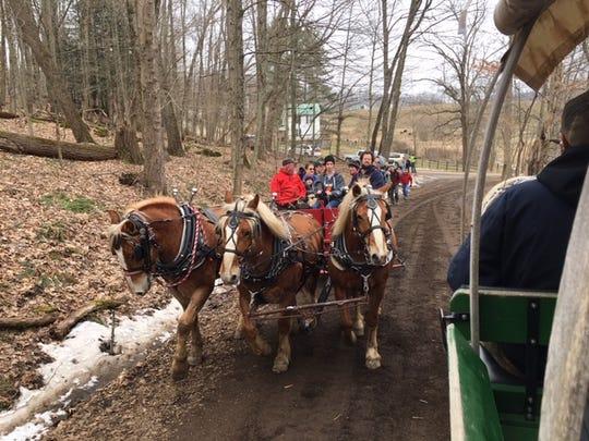 Malabar Farm Maple Syrup Festival provided horse-drawn wagon rides, a look at syrup making and plenty of food and fresh air Saturday.