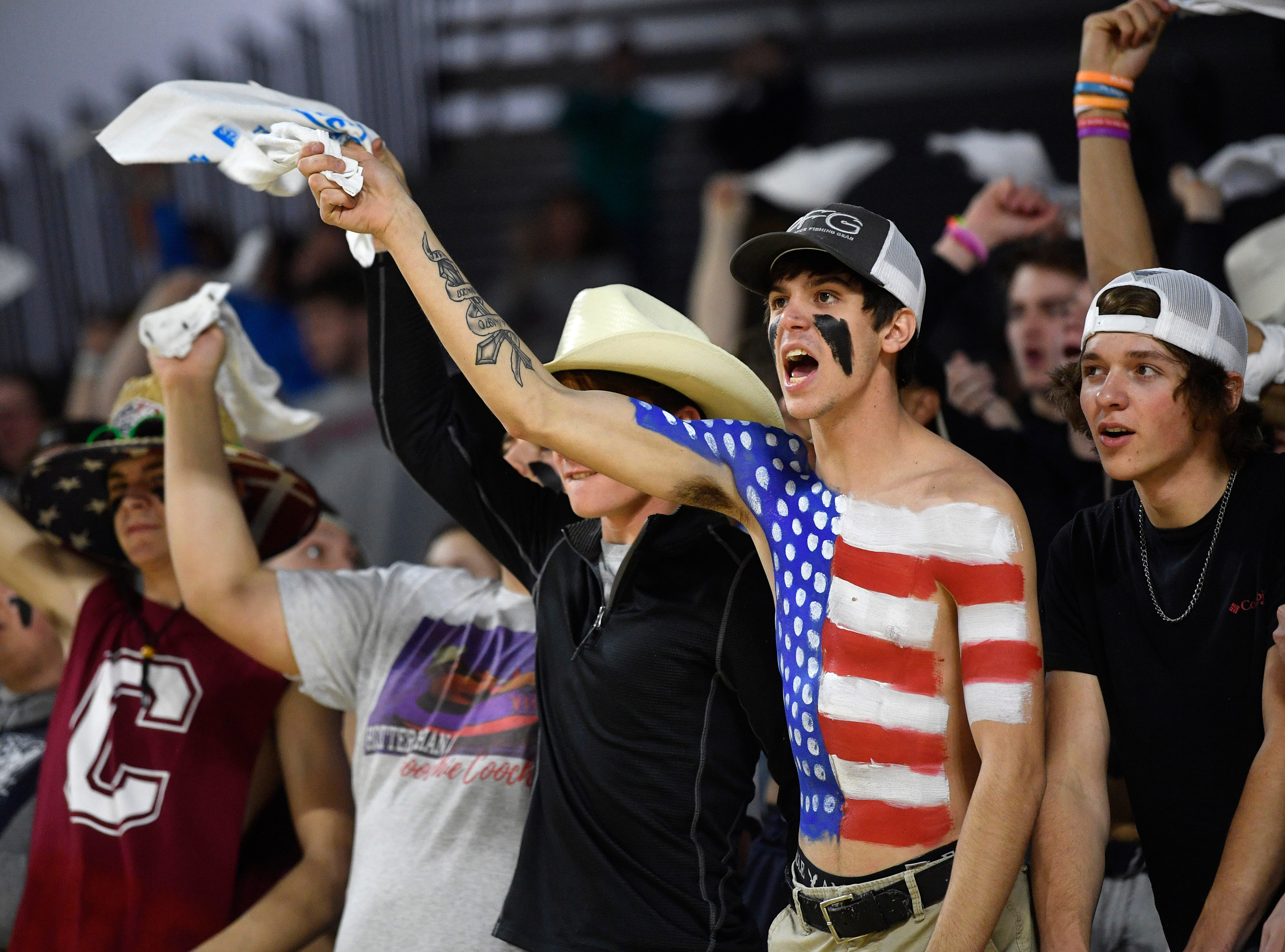 Fan are excited as they watch Cheatham County play Westview in the Class AA Championship Saturday, March 9, 2019, in Murfreesboro, Tenn.