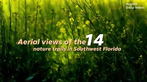 An aerial view of 14 nature trails in Southwest Florida