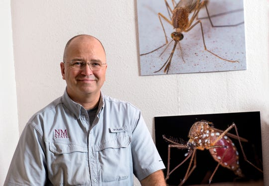 Immo Hansen, associate professor in New Mexico State University's Department of Biology, is in his lab at Foster Hall in July 2018. Hansen received a $1.46 million grant from the National Institutes of Health to study amino acid transport in mosquitoes in the hopes of finding new ways for controlling their population.