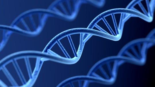 Computer Graphic DNA