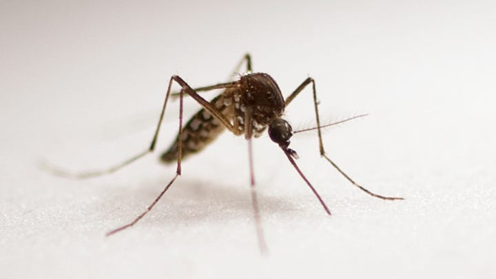 With a rainy spring, Marion County had few mosquitoes. That's no longer the case.