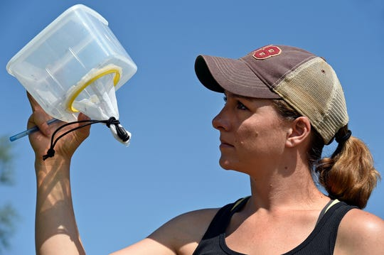 New Mexico State University researcher Kalli Martinez, master graduate student in biology, inspects a container with trapped mosquitoes in June 2017 while working in the field in Las Cruces.
