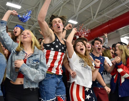 Detroit Country Day hockey fans celebrate their team's first goal in the state final against Houghton at USA Hockey Arena in Plymouth on March 9.