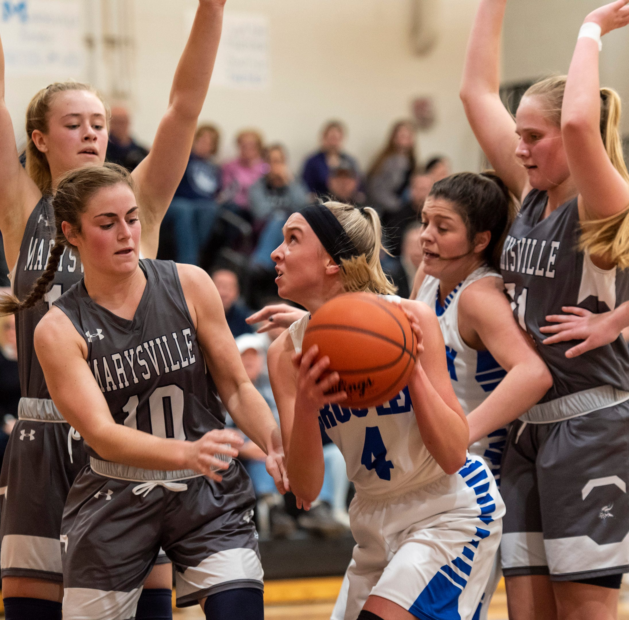 Blue Water Area high school girls basketball scores for district finals