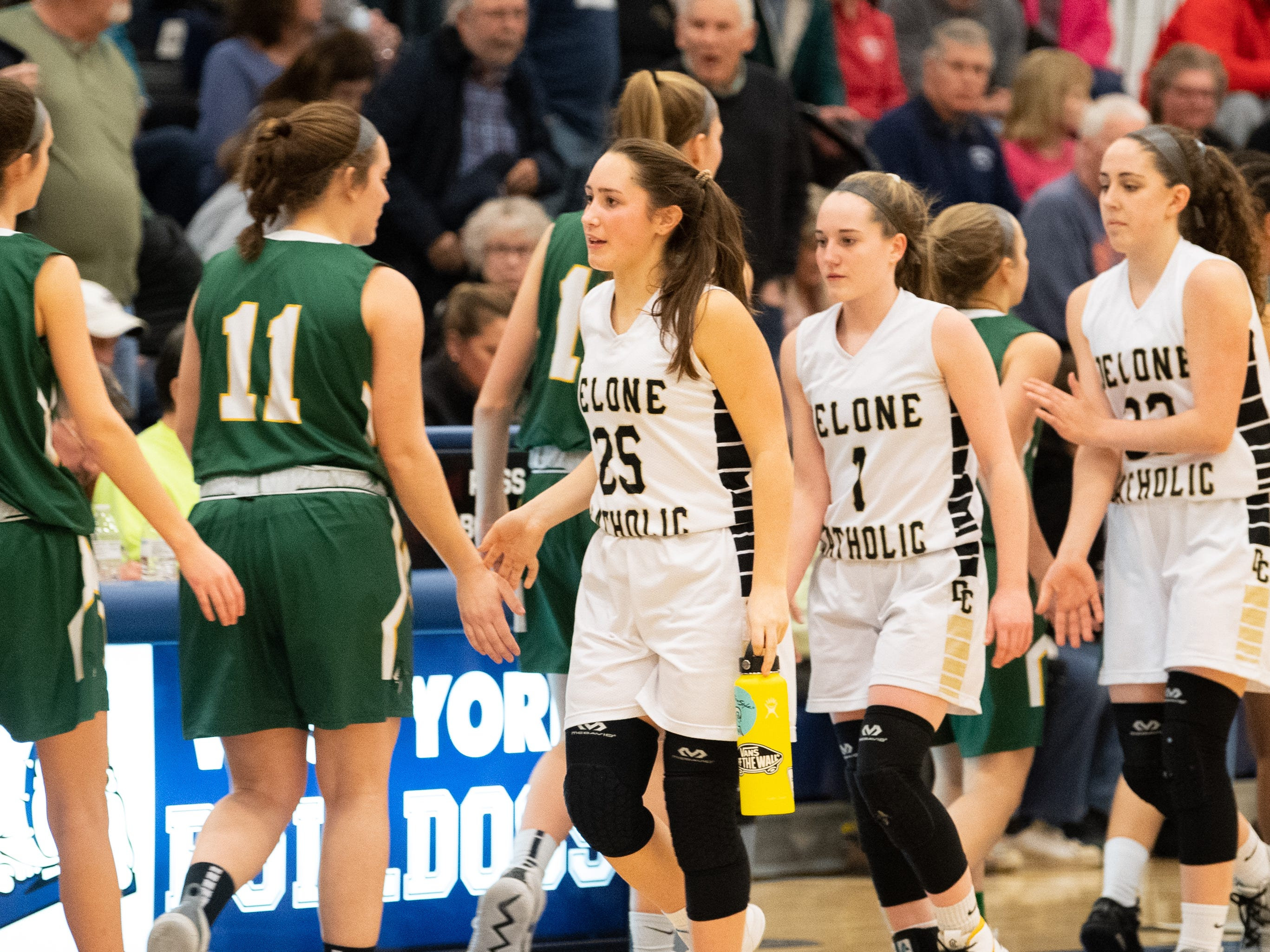 Both teammates shake hands after the PIAA first round girls' basketball game between Delone Catholic and Lewisburg Area Friday, March 8, 2019 at West York Area High School. The Squires defeated the Green Dragons 77 to 36.