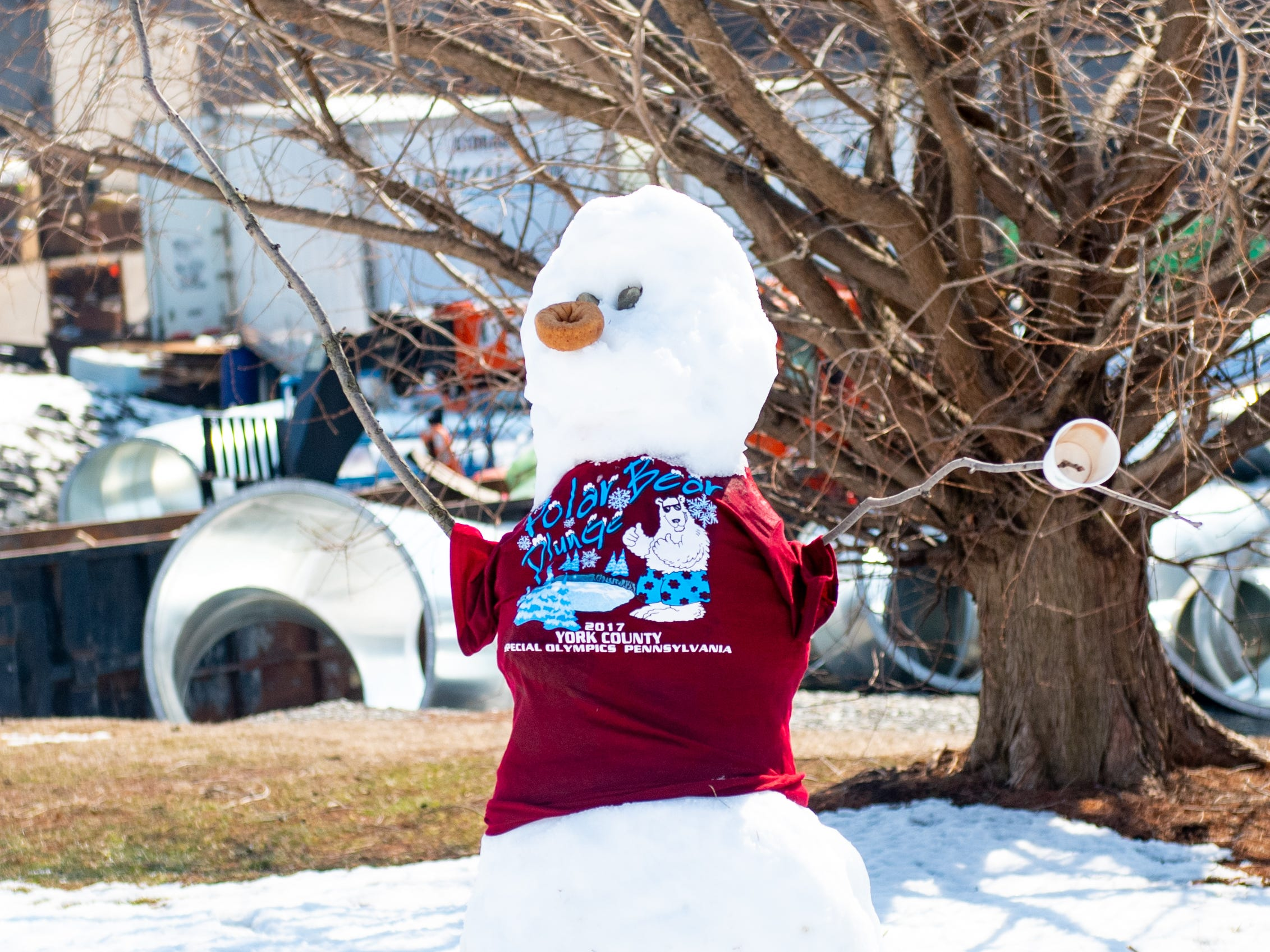 A snowman with a Polar Plunge T-shirt overlooks the Susquehanna River, March 9, 2019.