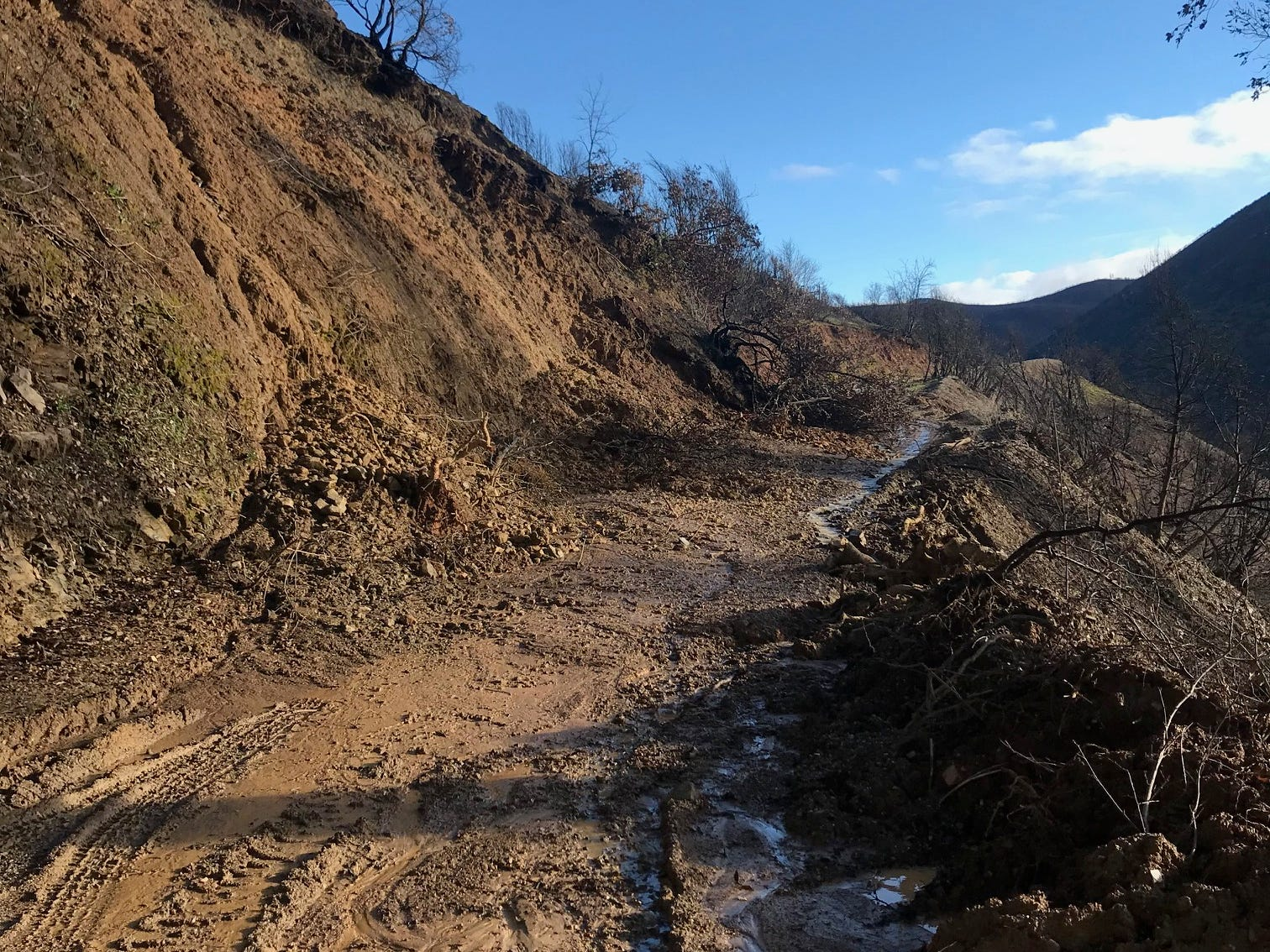 A mudslide closed Tom Green Mine Road near French Gulch on Friday, March 8, 2019.