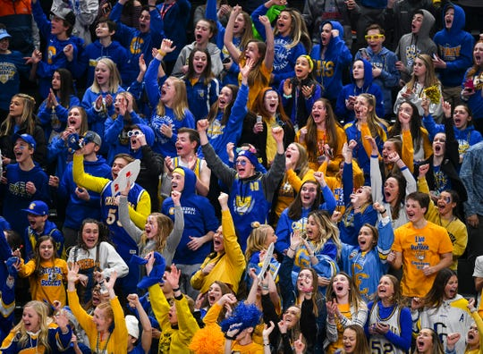 Cathedral fans cheer following a third period goal by their team during the state Class A championship game Saturday, March 9, 2019, at the Xcel Energy Center in St. Paul. Cathedral won the state championship with a 5-2 win against Greenway.