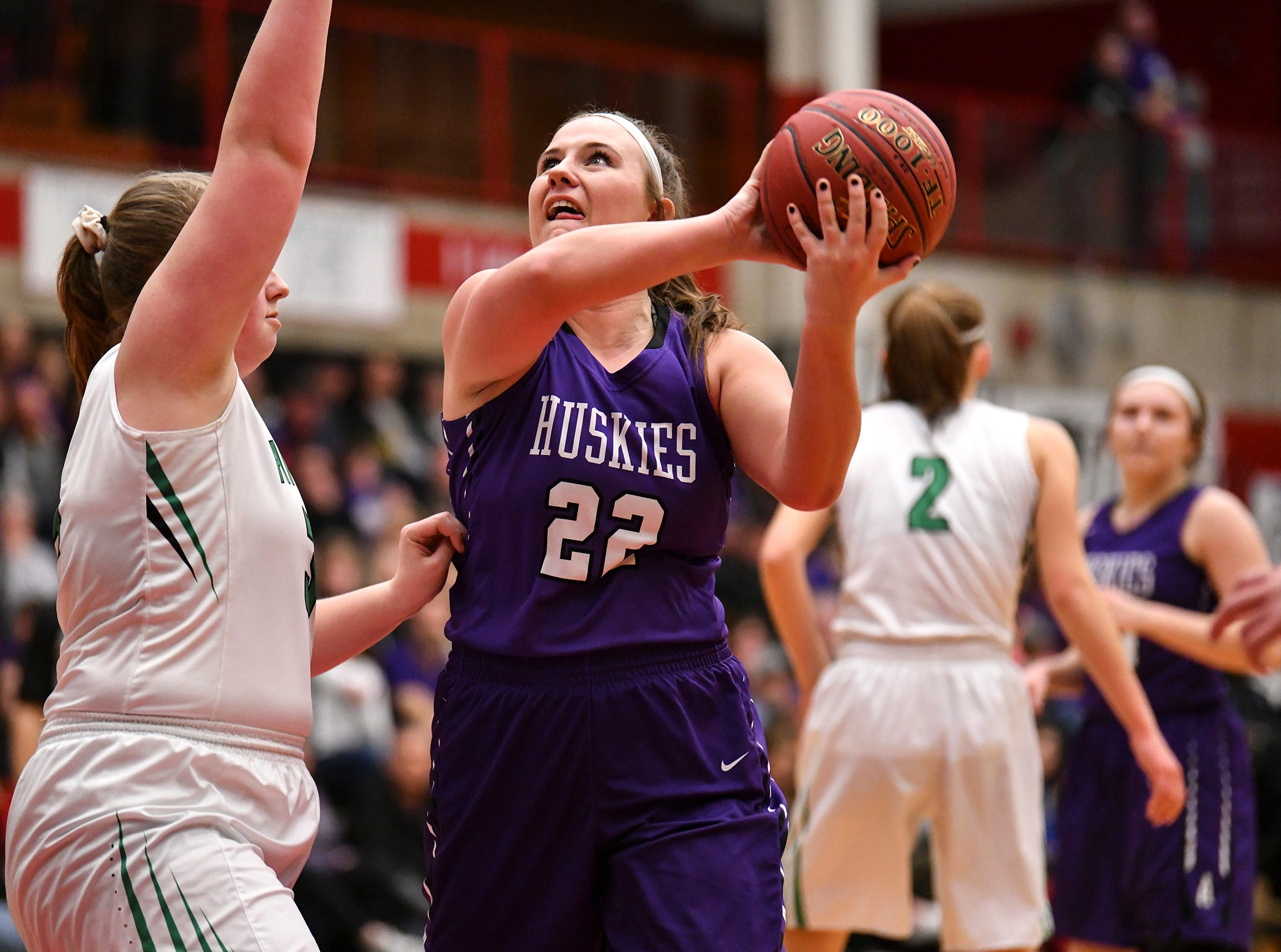 Albany's Breanna Mellesmoen puts up a shot  during the Section 6-2A championship game against Pine City Friday, March 8, at Halenbeck Hall in St. Cloud.