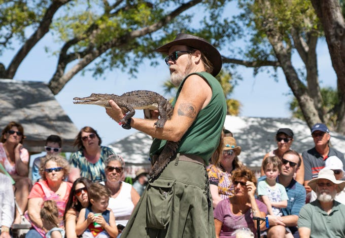 """""""The animals that we bring are ones that cannot be released back into the wild, but they can be ambassadors for their wild cousins. Most people don't get close to wild animals anymore, so we take the animals to the people,"""" said Tim Brown, center, Director of Education at the Treasure Coast Wildlife Center in Palm City, who talks about an American crocodile to the crowd at the 27th annual Pelican Island Wildlife Festival on Saturday, March 9, 2019, at Riverview Park in Sebastian. The festival celebrates the anniversary of the establishment of Pelican Island as the nationÕs first national wildlife refuge on March 14, 1903, by President Theodore Roosevelt."""
