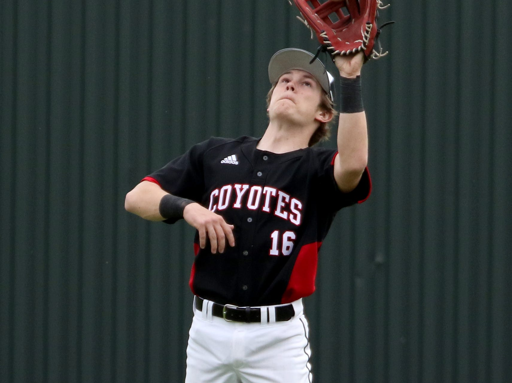 Wichita Falls High School's Matthew Terry catches the flyball in the game against Holliday Friday, March 8, 2019, in Bowie for the Walker Stallcup Tournament.