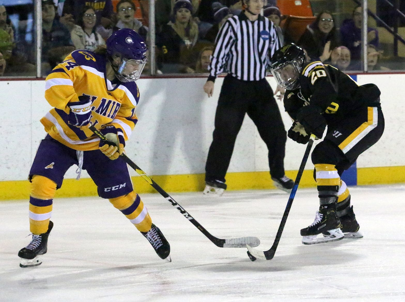 Adrian was a 3-2 overtime winner against Elmira College in an NCAA Division III women's hockey quarterfinal March 9, 2019 at the Murray Athletic Center.