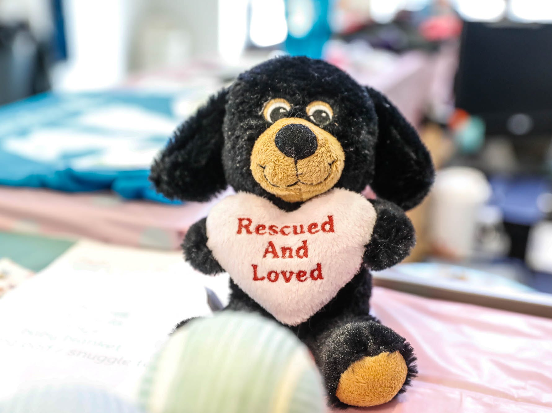 A stuffed dog greets guests at  Indy Humane during their Puppy and Kitten Baby Shower, held at Indy Humane on Sunday, March 10, 2019. The event educates families on Indy Humane's foster care program, as Fosters are needed in the spring during puppy and kitten season.
