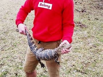 AJ Stratton holds an alligator that was found along South Creek Trail, behind Carver Middle School.