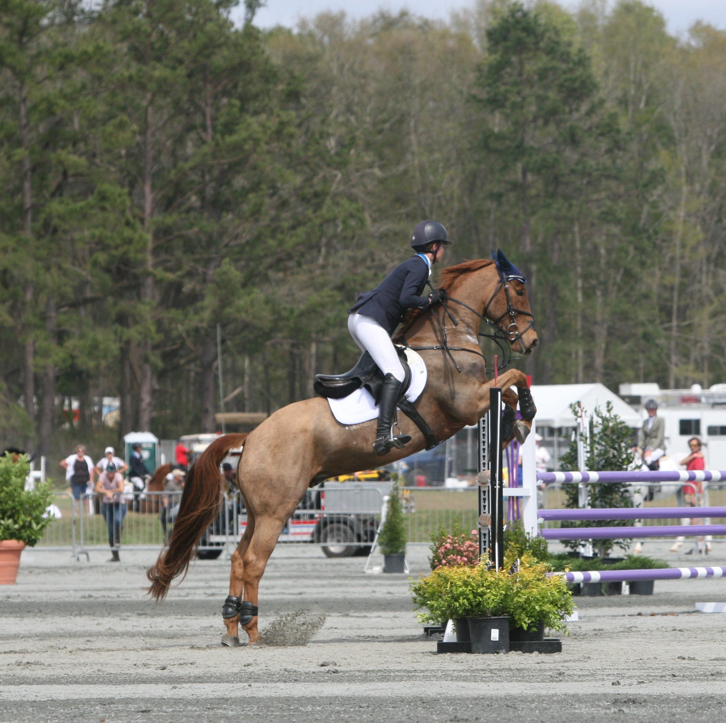 Final day at Red Hills Horse Trials reshuffles rankings