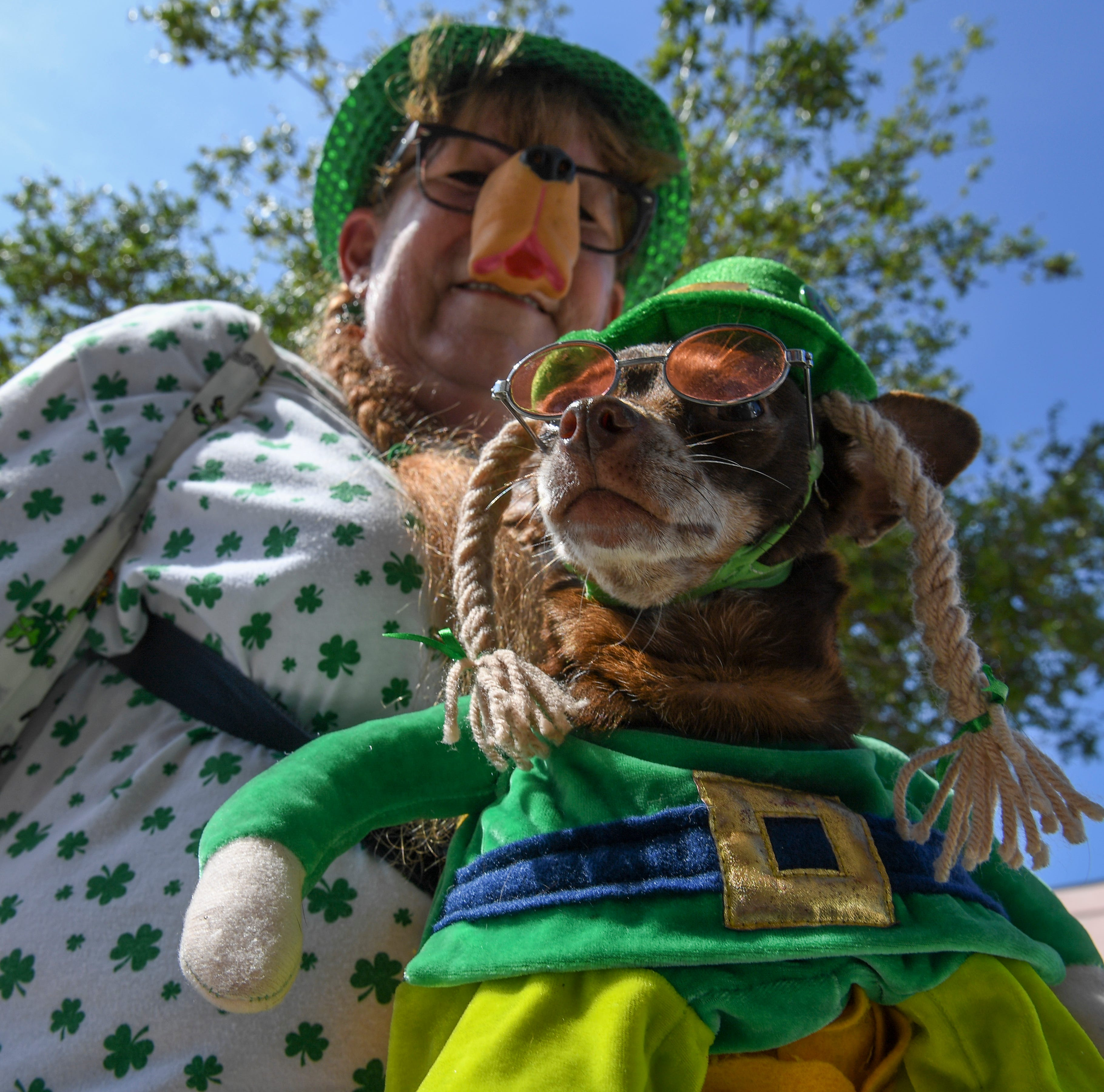 St. Patrick's Day parties, ShrimpFest, craft beer, surfing contest top events this weekend