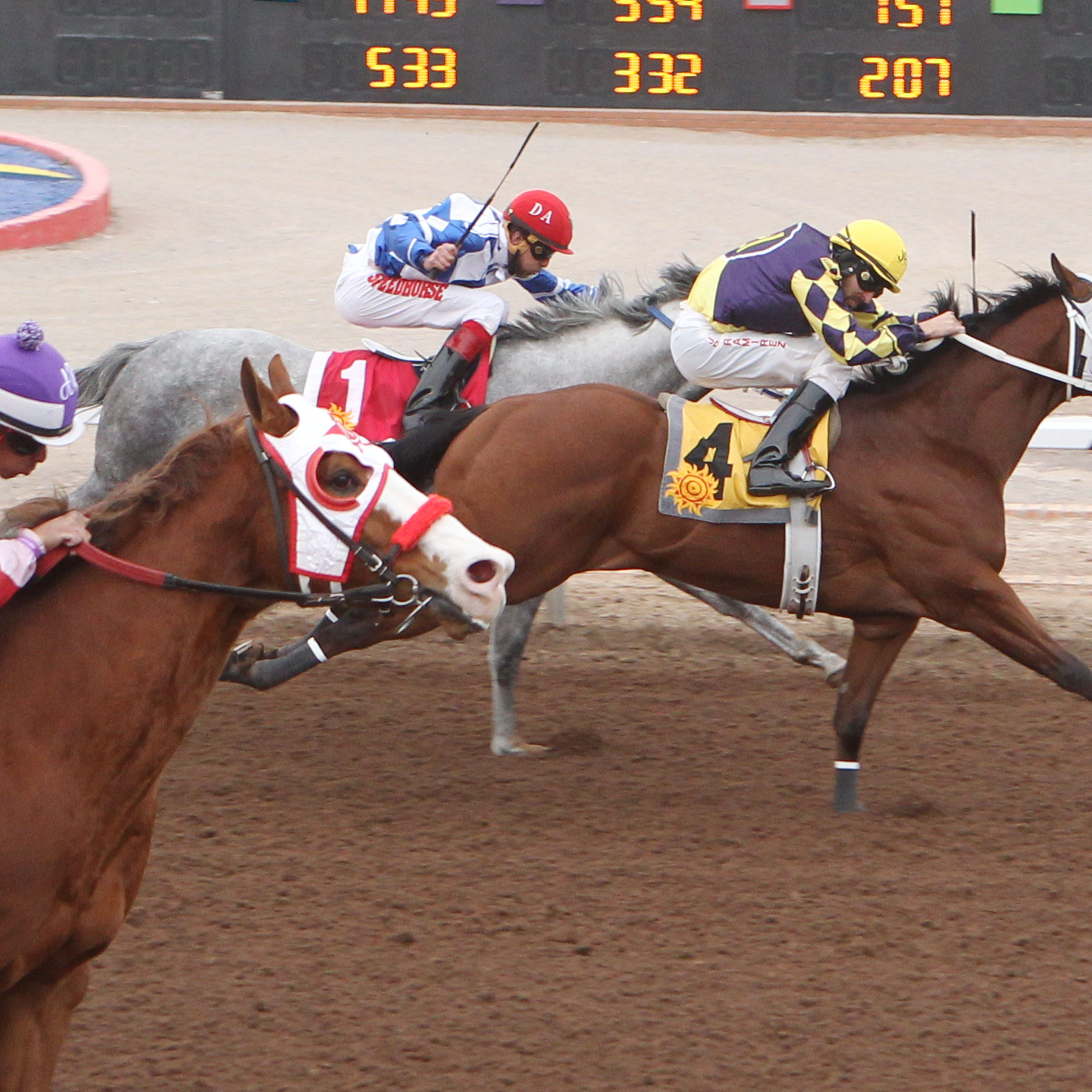 Jacky Martin 21 wins West Texas Quarter Maturity for El Paso owners