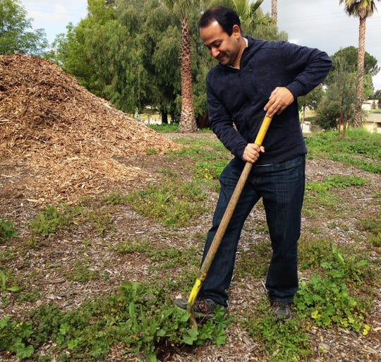 Abhi Sambari, of Simi Valley, was among numerous volunteers who shoveled away weeds from the front lawn of the Simi Valley Samaritan Center on Saturday during Community Volunteer Day. Sambari is the founder of The Change You Want to See, a media company that produced a documentary about the Samaritan Center and promoted Saturday's event on social media