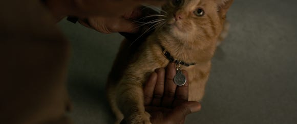 "Goose (played by real cat Reggie) makes friends with the heroes in ""Captain Marvel."""