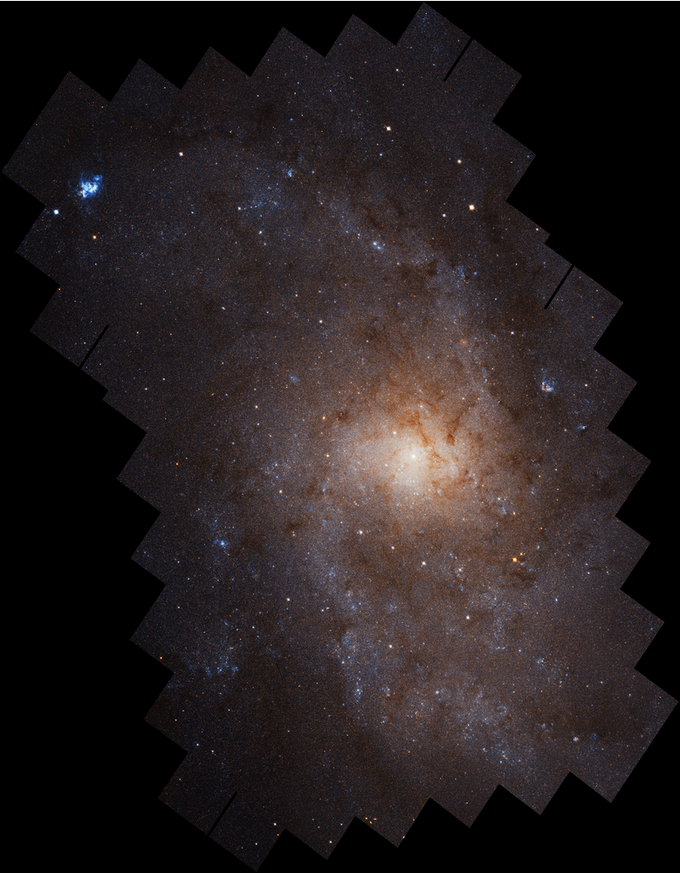 Jan. 7, 2019: NASA's Hubble Space Telescope has produced this stunningly detailed portrait of the Triangulum galaxy (M33), displaying a full spiral face aglow with the light of nearly 25 million individually resolved stars. It is the largest high-resolution mosaic image of Triangulum ever assembled, composed of 54 Hubble fields of view spanning an area more than 19,000 light-years across.